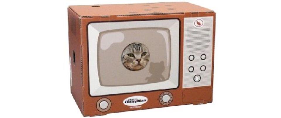あなたにとってNo.1な猫コンテンツはココにある!
