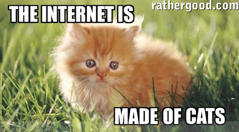 150922internetcats.jpg
