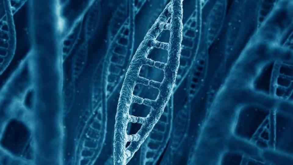 米国防総省が遺伝子工学に投資、一体何をやろうとしているのでしょう