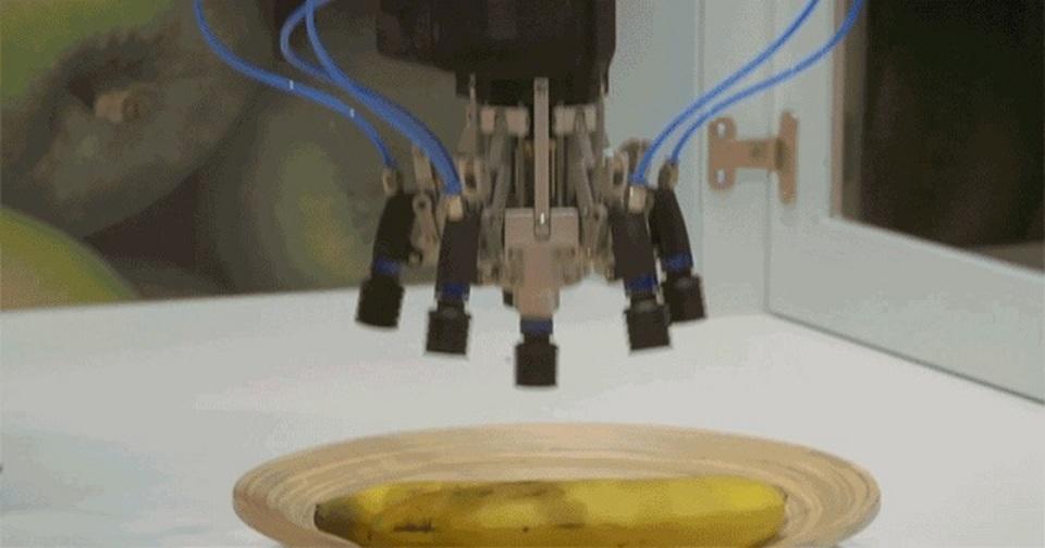 果物をつかんで分けるロボット、イギリスで誕生