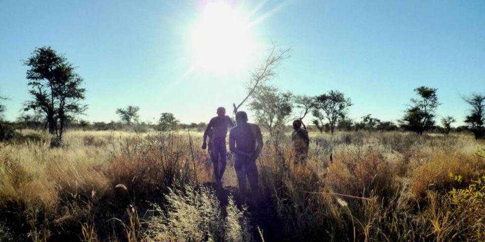 UCLAの研究チームが世界の部族から学んだ睡眠習慣