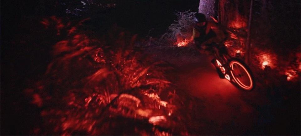 夜の自然をカラフルに彩り、マウンテンバイクで駆け抜ける