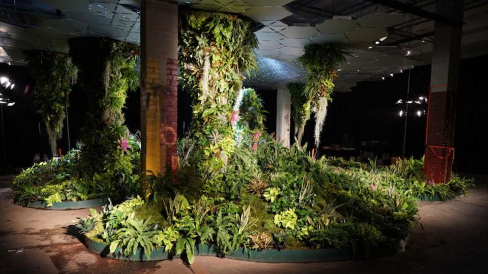 世界初の地下公園。これがニューヨークのジャングル、「ロウライン」だ!(まだ実験中)