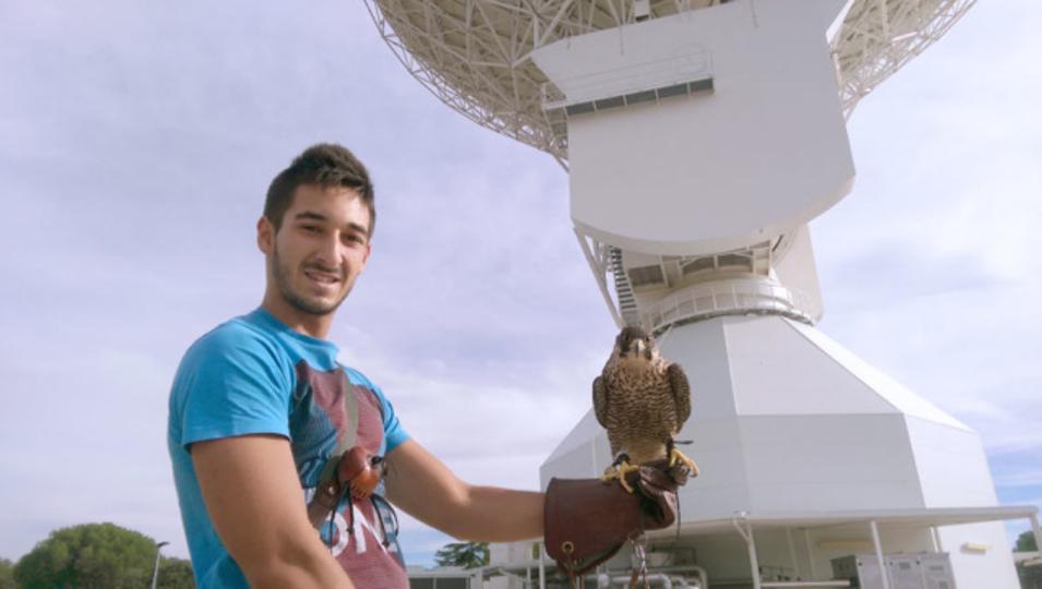 深宇宙探査用アンテナの守護鳥・ナーラだよっ