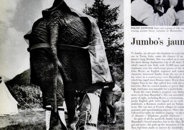 「ハンニバルの象」の謎を追い、象とアルプス越えした人がいた