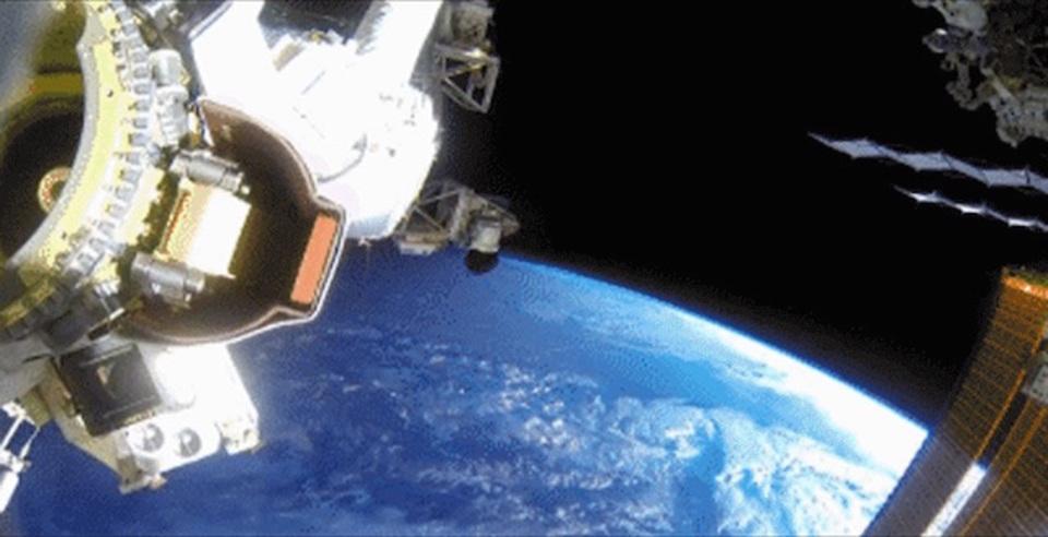 NASAが公開したGIFで楽しむフリーダムすぎな宇宙飛行士たち