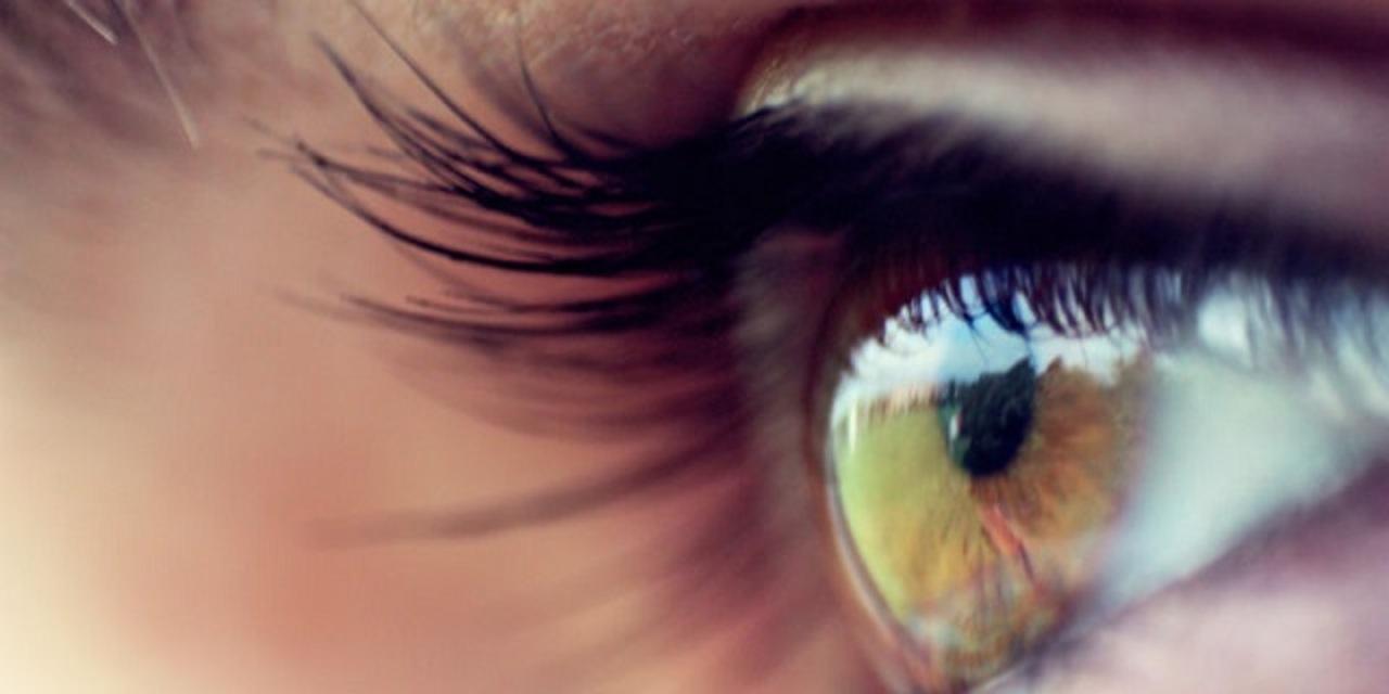 映像を脳に直接入力するバイオニックアイ、2016年に臨床実験へ
