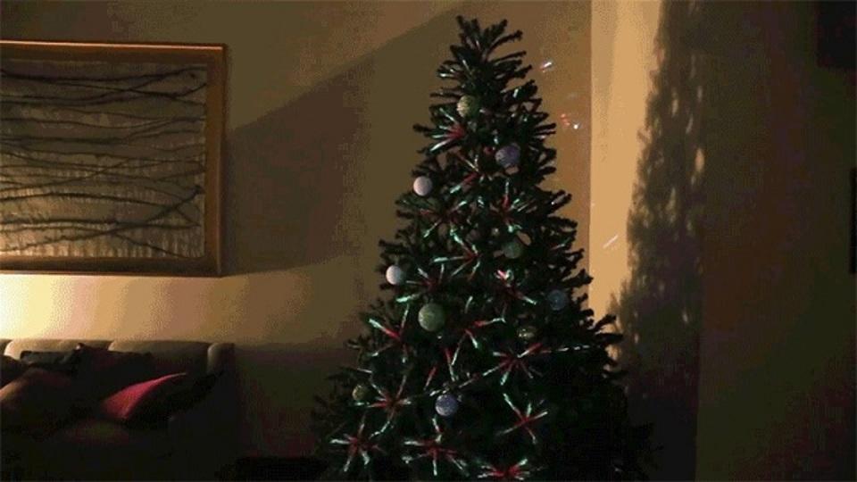 これは賢いかも。プロジェクションマッピングを利用したクリスマスツリー
