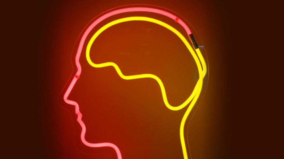 「英語が苦手」は脳の部位同士のつながりのせいかも
