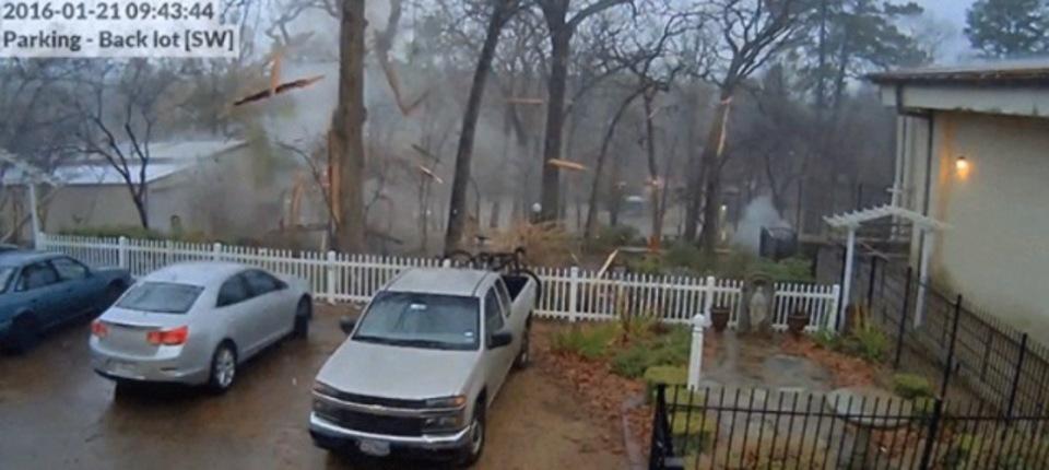 予想通りの破壊力。雷が大木に落ちるとこうなる