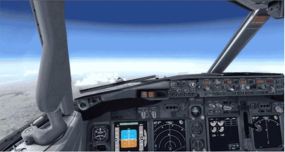 飛行機の緊急着陸の仕方を教えてもらおう