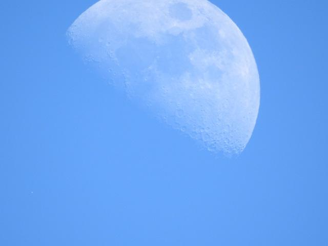 160116_nikon_moon01.jpg