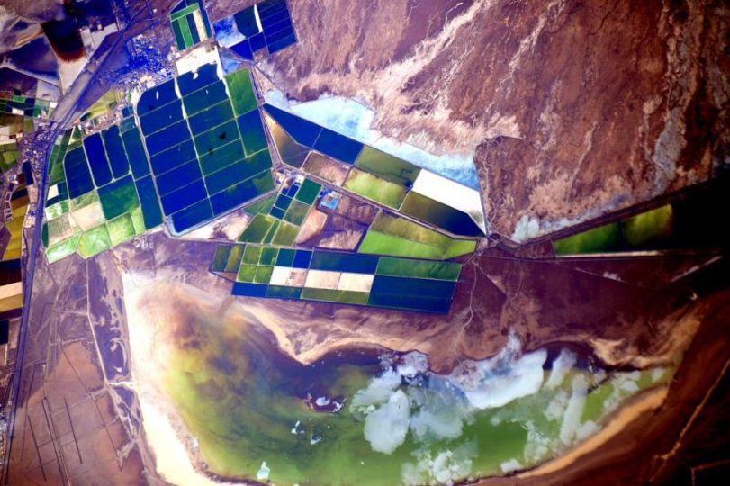 ほとんど草木の生えない場所なのに、緑色なのはなぜ? 中国のソルトレイクにあるもの