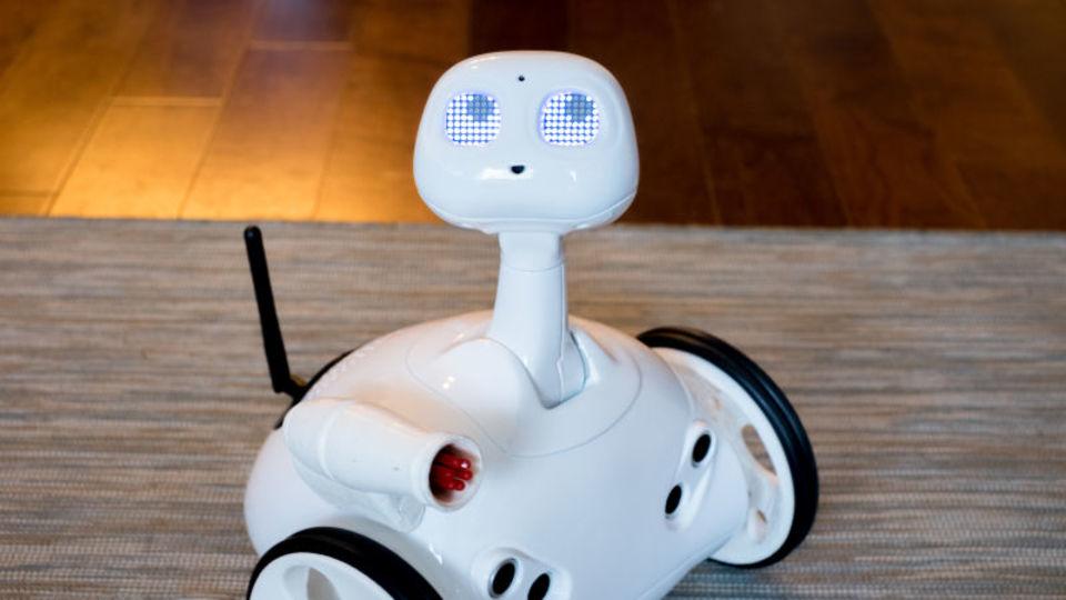 ラジコンにPepperの頭がついたみたいな家庭用ロボットが登場したよ