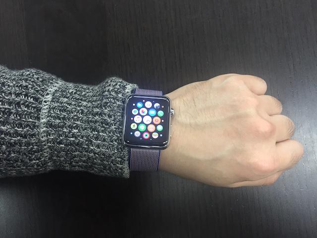 20160323applewatchband07.jpg