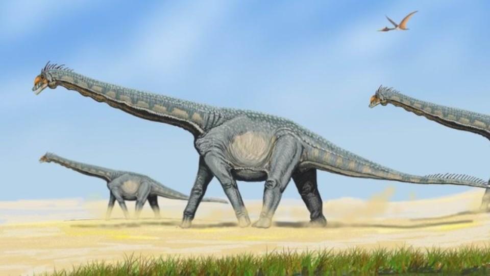 地上最大の恐竜、成長速度は激早だった