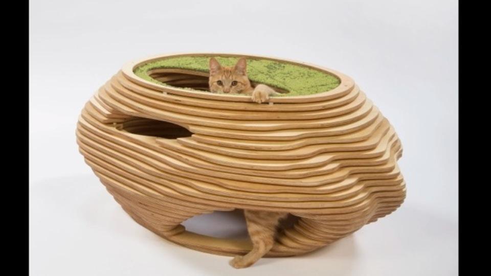 プロの建築家たちによるデザイナーズ猫ハウスのオークションが必見(猫が気にいるかは別だけど)
