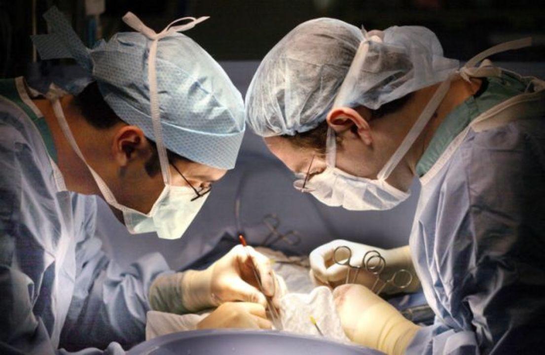 世界初、HIV患者間の肝臓移植が成功