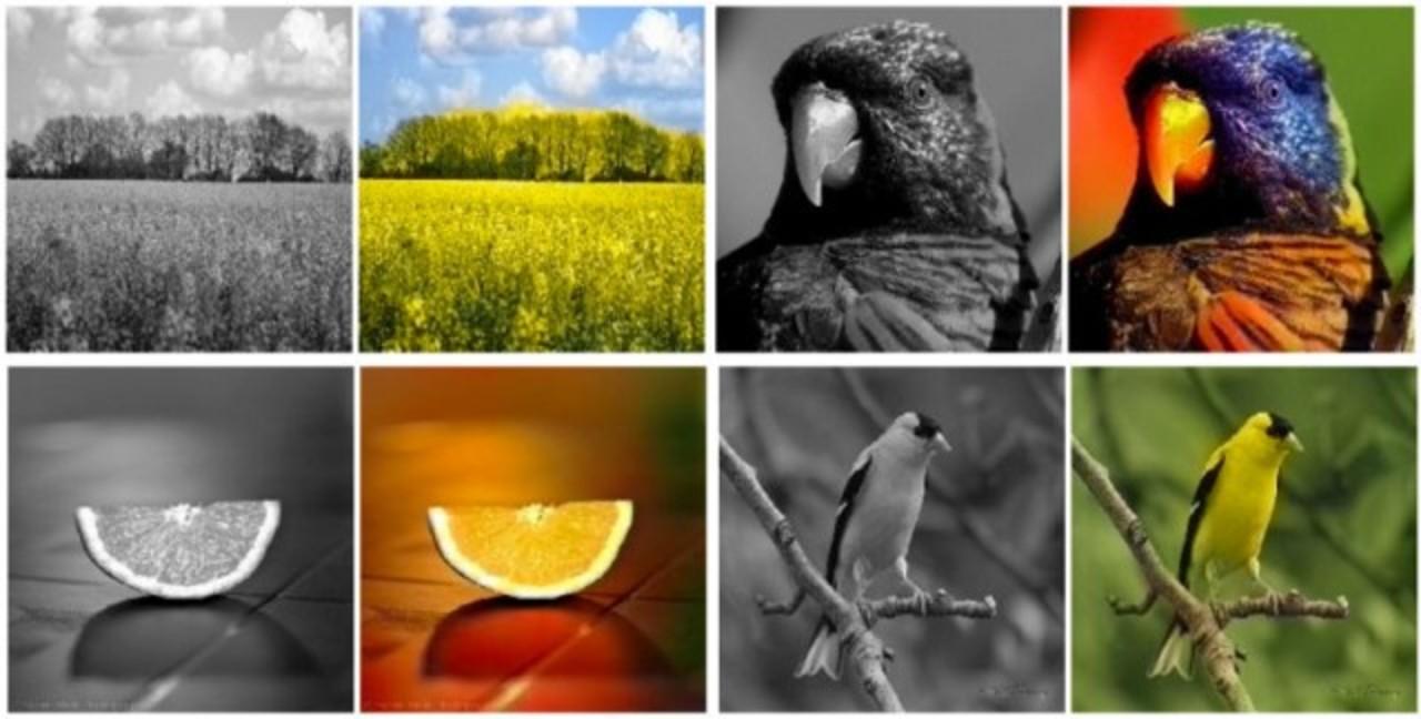 モノクロ写真からカラー写真にするソフトウェア