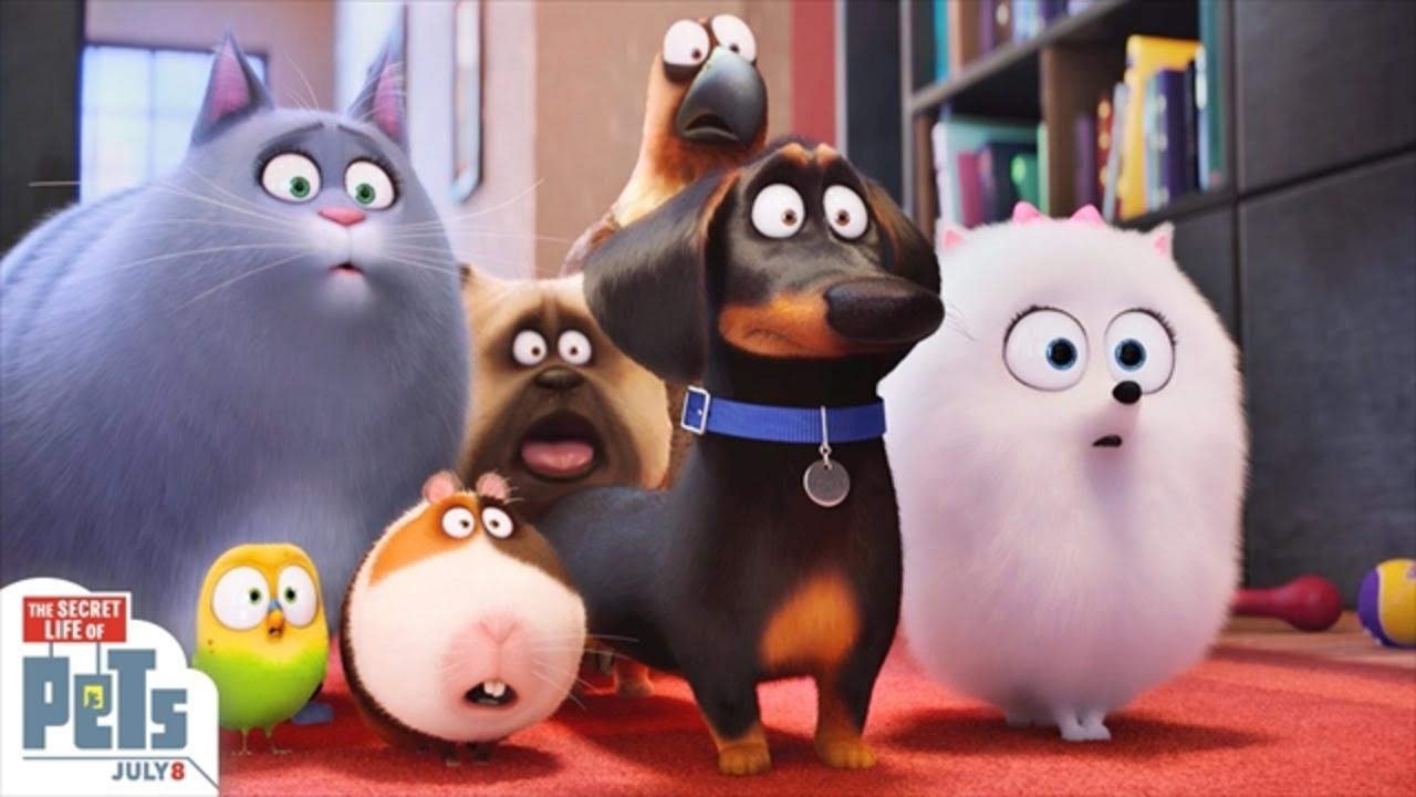 動物好きにはたまらないCGアニメ映画「ペット」予告編