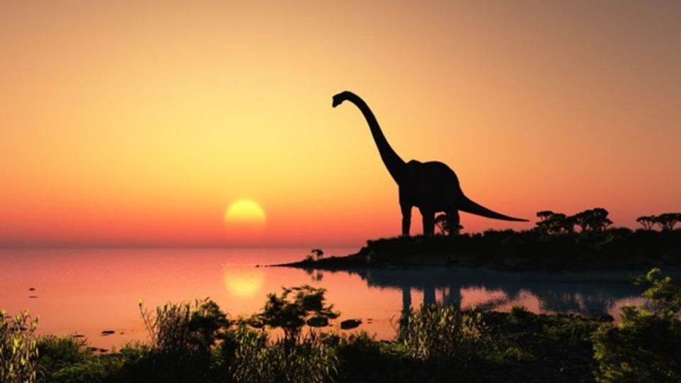 恐竜は急に絶滅したんじゃなく、隕石衝突前から死に体だった?
