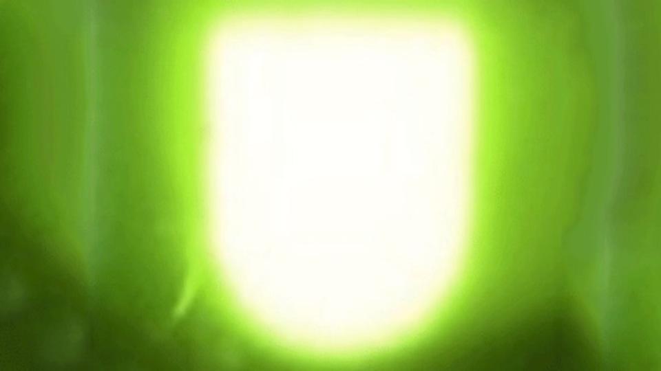 もう何なの自然界、賢すぎ。ホタルの構造を真似たLEDライトが60%明るくなる