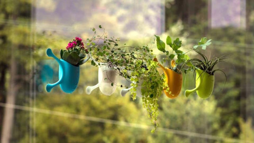 窓にピタ! 小動物みたいな植木鉢だよ