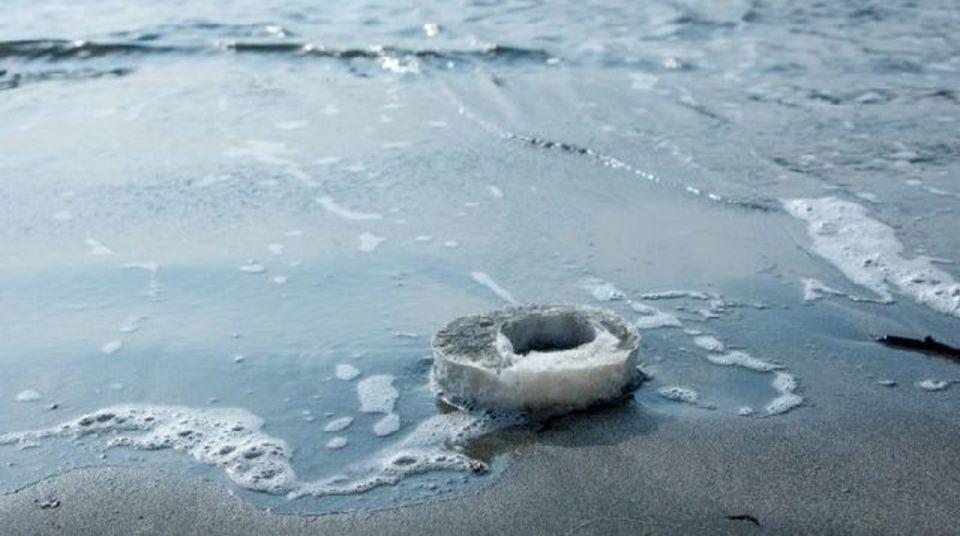 寒天からつくる新しい梱包素材が海洋生物を救うかも