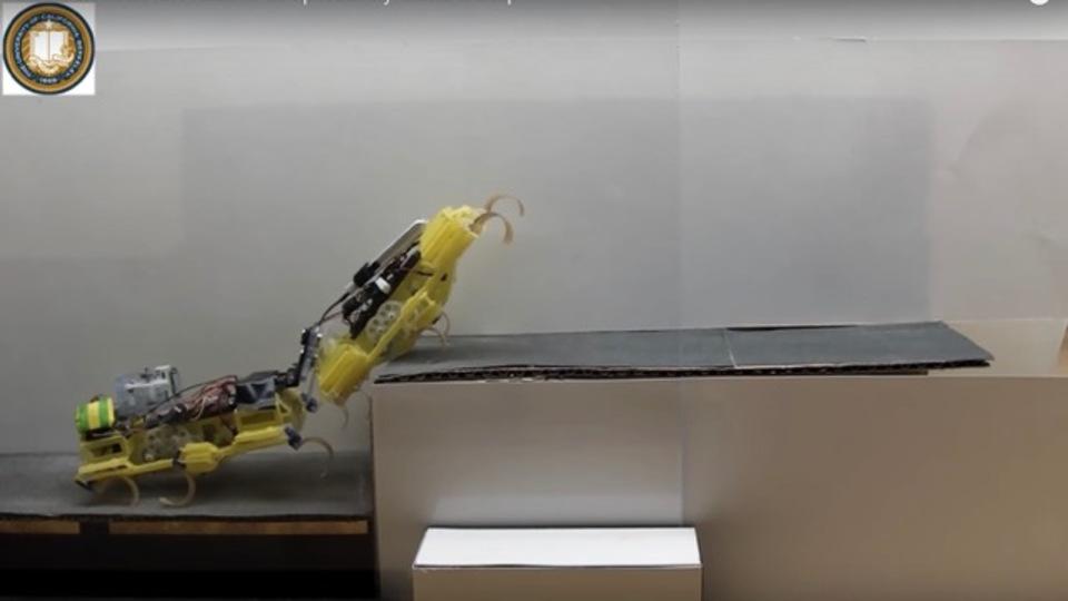 ゴキブリロボット2匹が協力して段差を上がる姿が健気な兄弟のよう