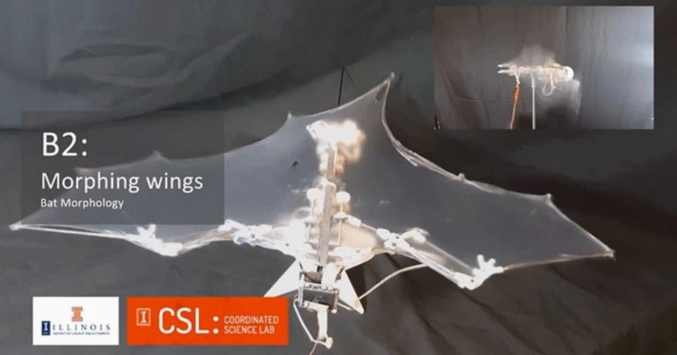 設計は3Dプリンタ、羽はシリコンで製作。本物みたいなロボットコウモリ