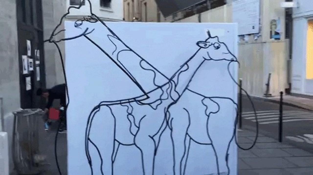 これはお見事! 角度によって違う動物に見えるアート作品