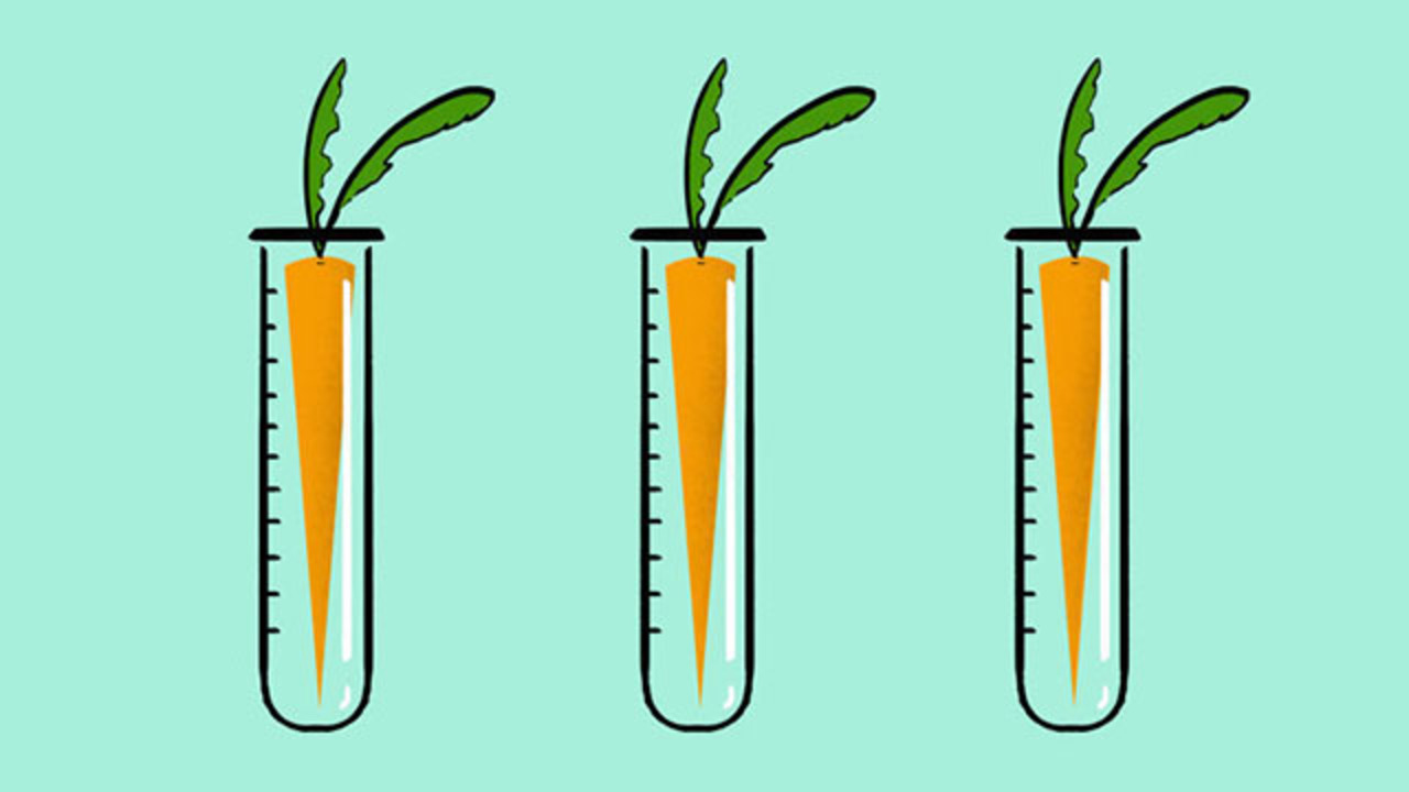 なぜ、いまだに遺伝子組み換え作物が敬遠されるのか?