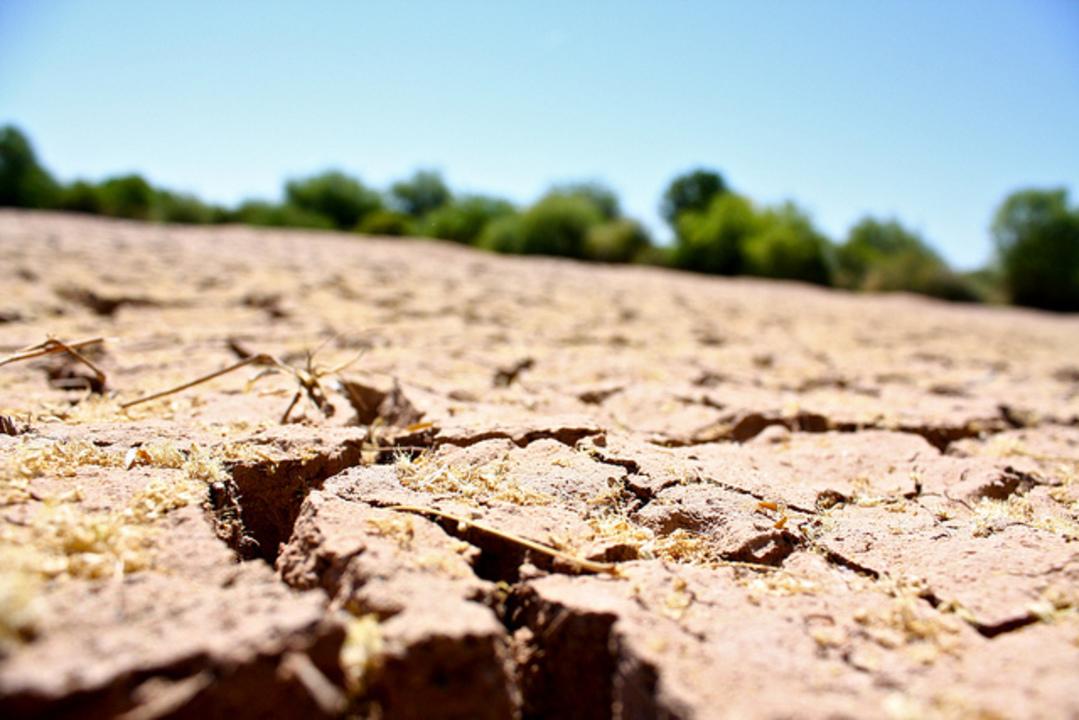インドで過去最高気温、51度を記録。熱波による死者も多数