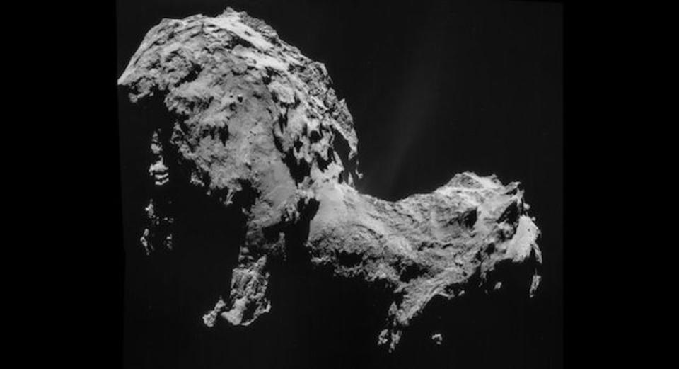 ロゼッタの彗星、腐れ縁のふたつの彗星でできているのかも