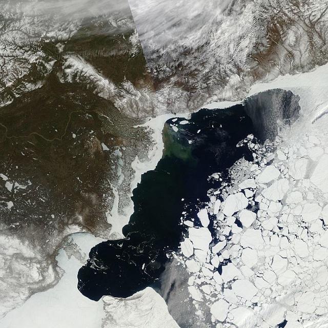 1606068_arctic_3.jpg