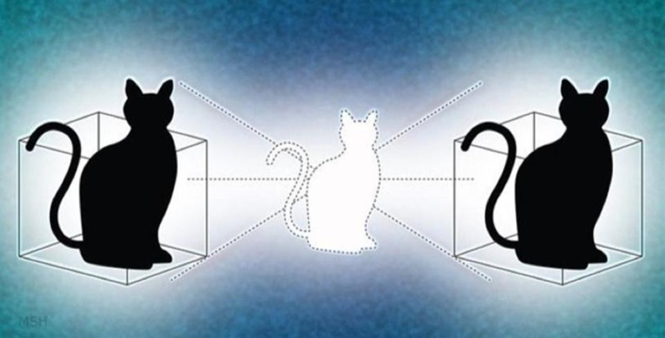 シュレーディンガーの猫が2つの箱に