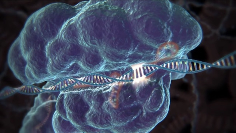 遺伝子編集ツール「CRISPR」ついに人間での使用へ? 審議がライブストリーム