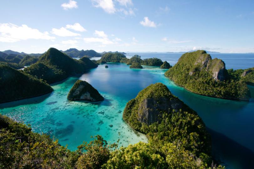地球で最も多様な海の生き物が暮らす世界の水中ツアー