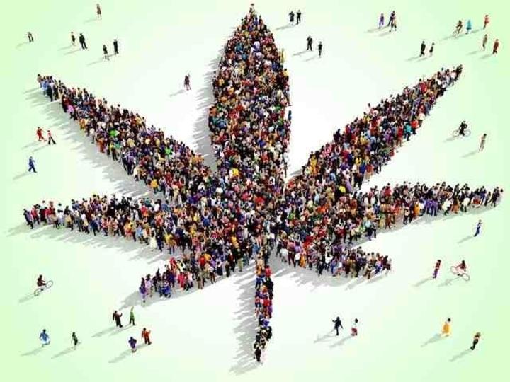 アルツハイマー病の治療に大麻が効くらしい…