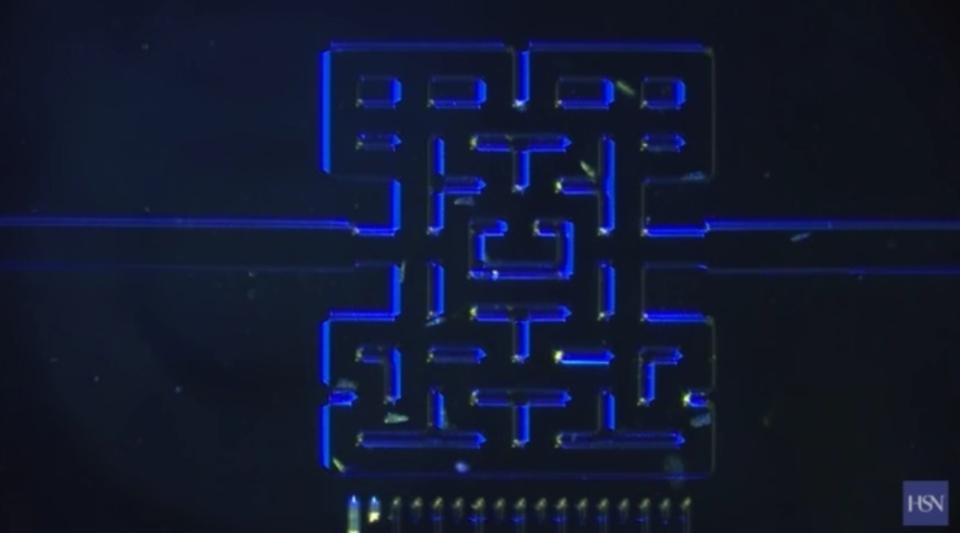 なに遊んでんのよ! 微生物で1mmサイズの「パックマン」をプレイする研究者たち