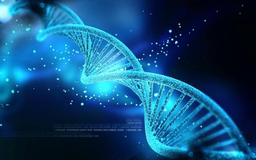 嫌な思い出を記憶から消す「遺伝子スイッチ」
