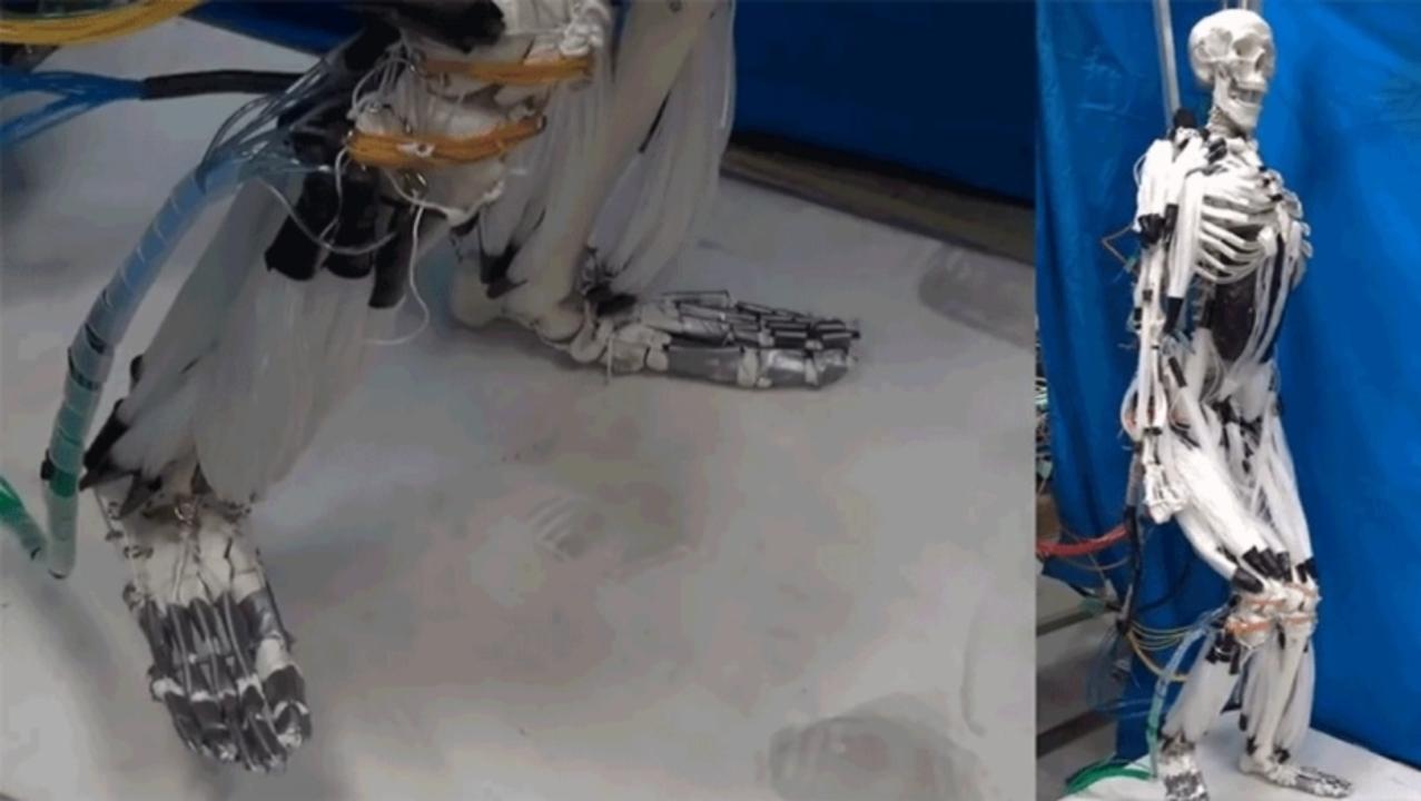 人工筋肉を備えたロボット、将来は人間との区別がつかなくなるかも