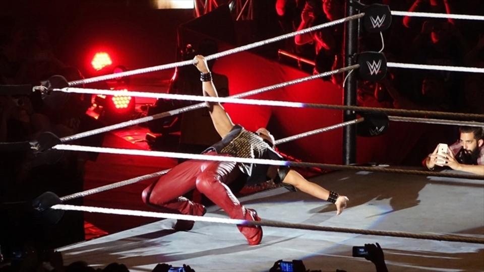 「WWE LIVE」に見た、映像配信サービスと生観戦の今