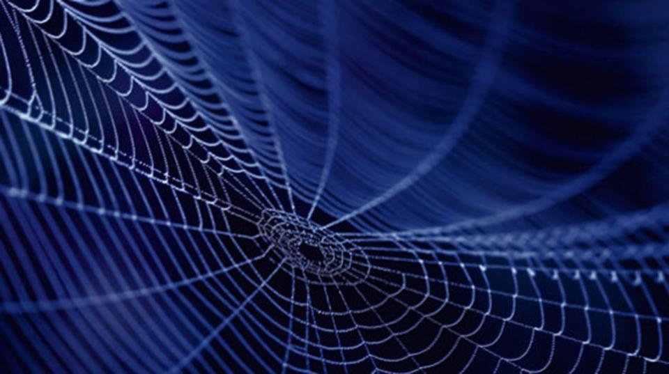 米陸軍が企業と契約して、「遺伝子操作された蚕」の糸でボディアーマーを開発するかも
