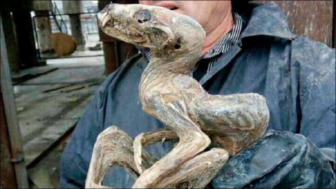 なんじゃこりゃあああ! シベリアで発見されたミイラが謎のクリーチャーにしか見えない