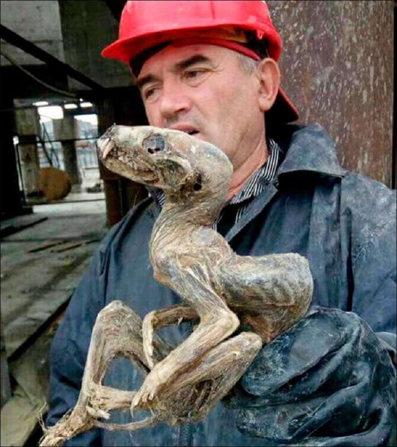 シベリアで発見されたクリーチャーっぽいミイラを持って語る人