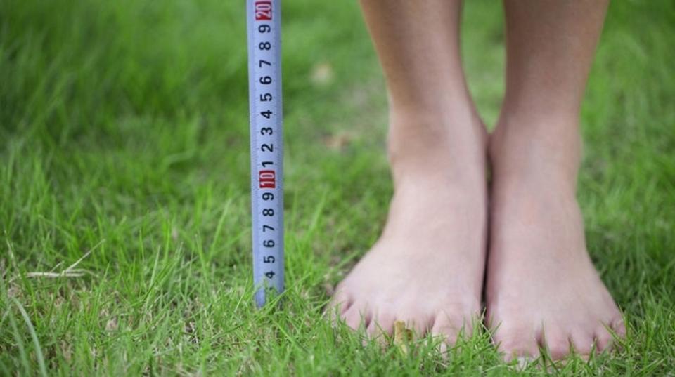 人間の手足の長さは住む場所によって決まっている…だけではなかった