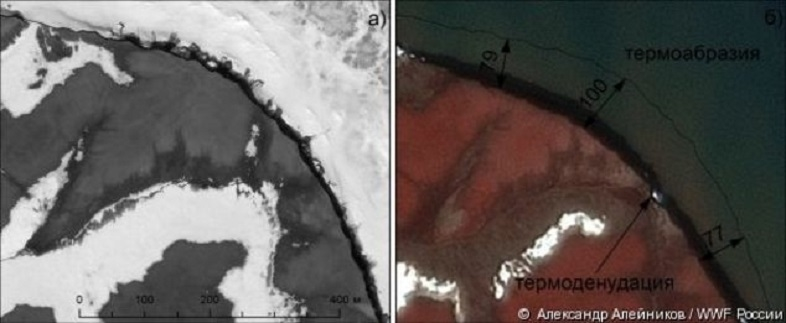 今年のロシアの北極圏の夏はデンジャラス、ヴィセ島衛星写真1