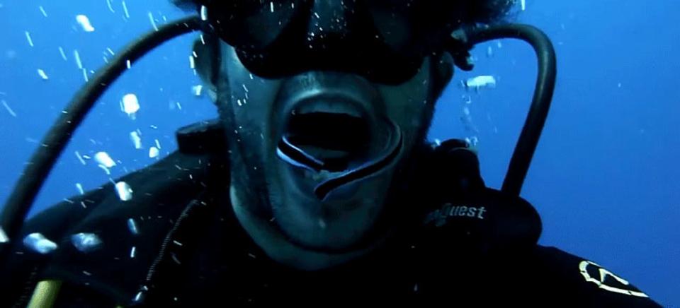 ダイバーならでは、手を使わないで水中で歯磨きする方法