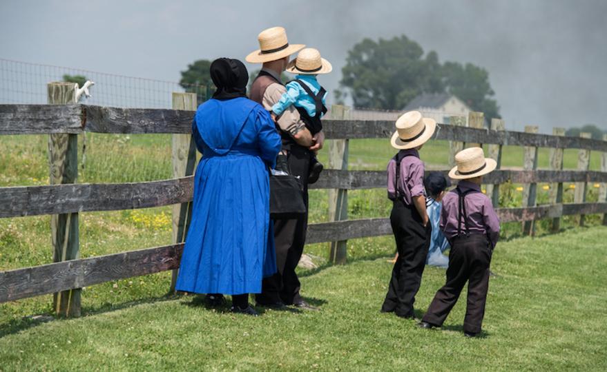 農場で家畜と育つ子たち、ぜん息に強い体質になると判明